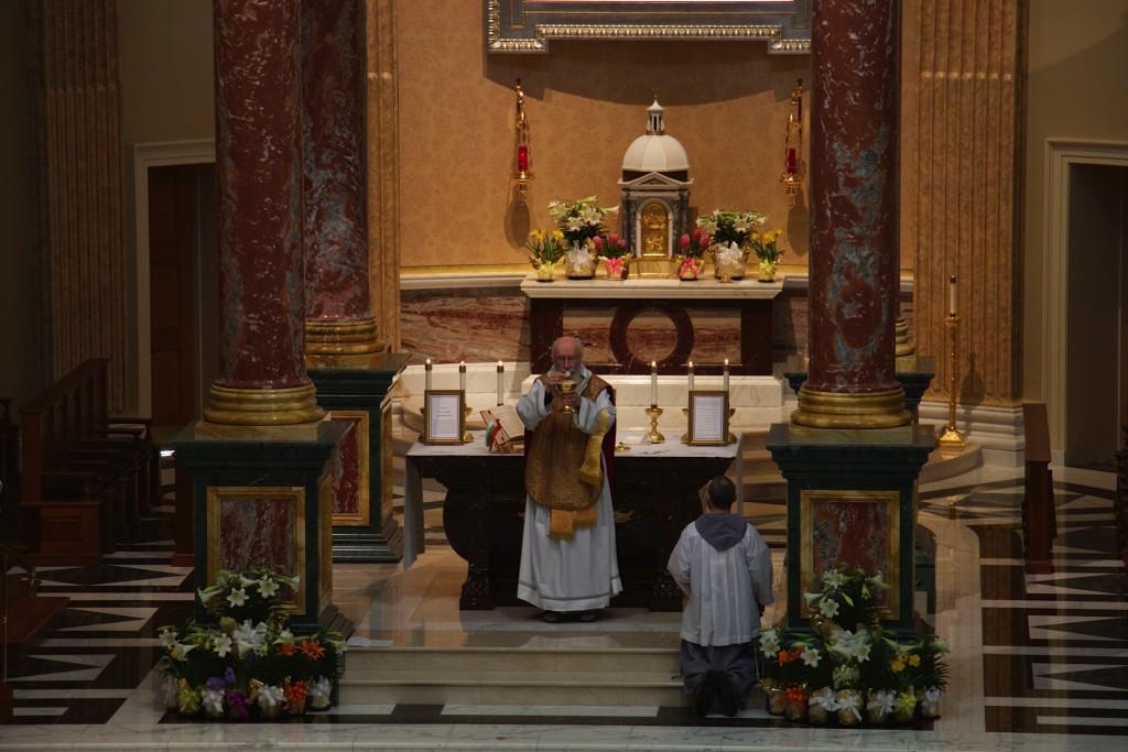 Shrine, Easter 2015, Ecce Agnus Dei